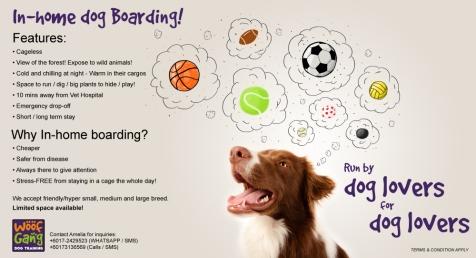 dog-boarding